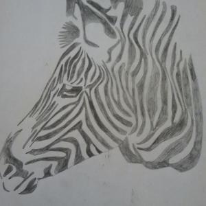 Gertjan de Moed zebra